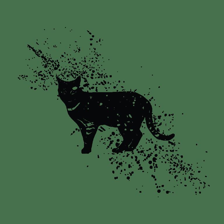 Временное тату черный кот