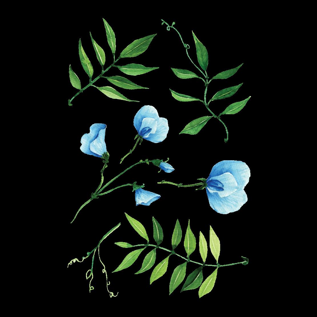 Временная тату набор голубых цветов