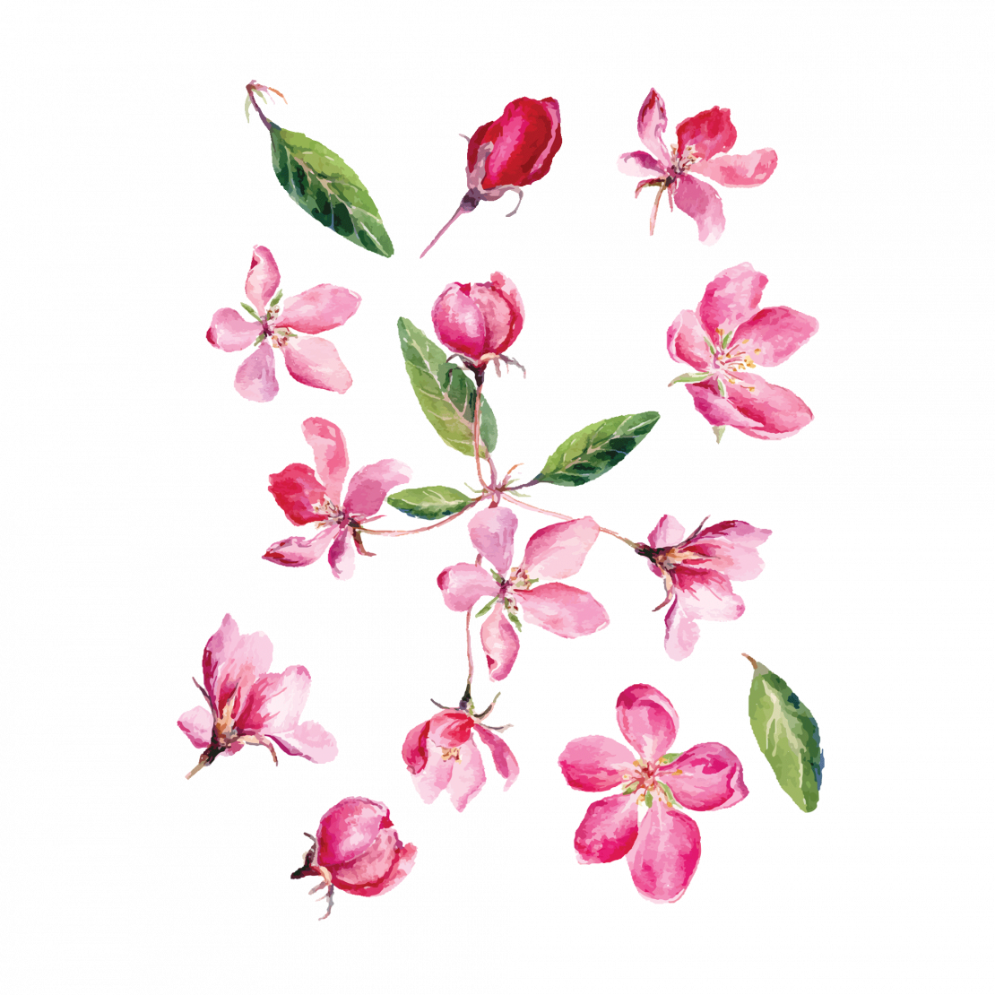 Временная тату розовые цветочки