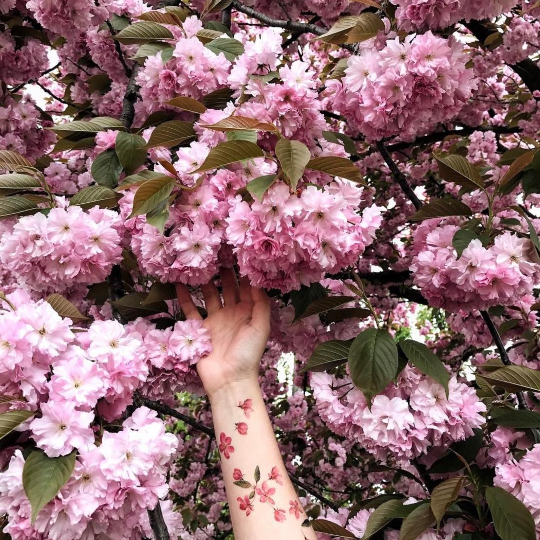 Переводная тату розовые цветочки на руках и сакура