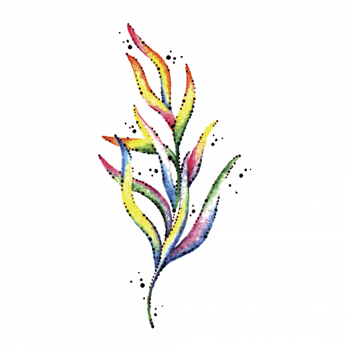 Временное тату водоросли