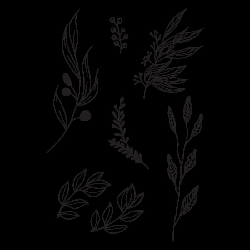 Временное тату набор черных веточек