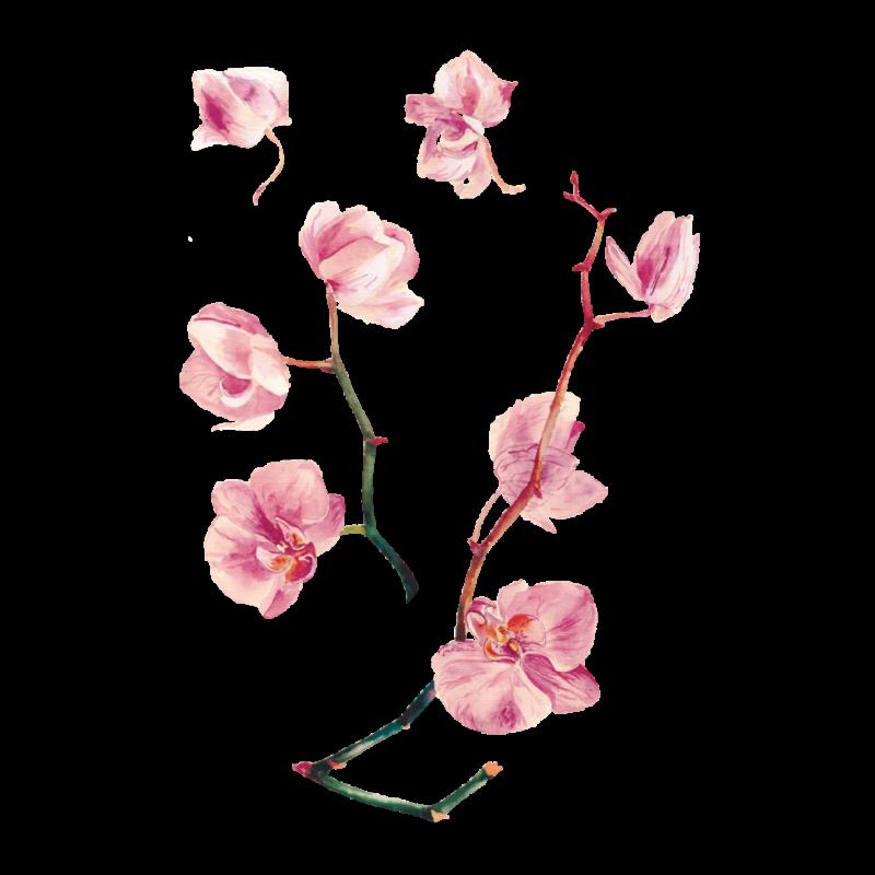 Временная тату орхидея