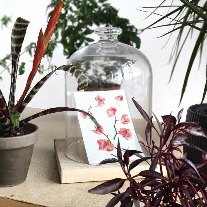 Тату наклейка орхидея в стеклянном колпаке