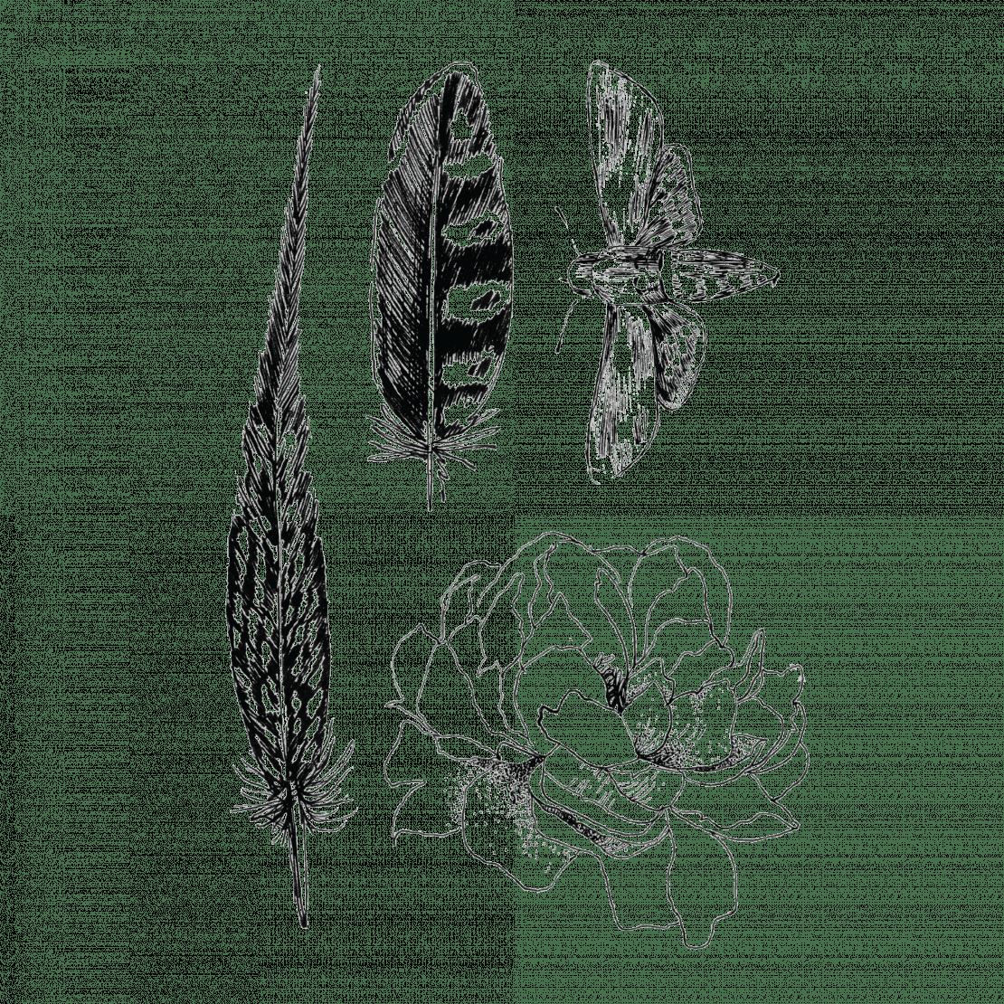 Временное тату набор перья цветы и мотыль