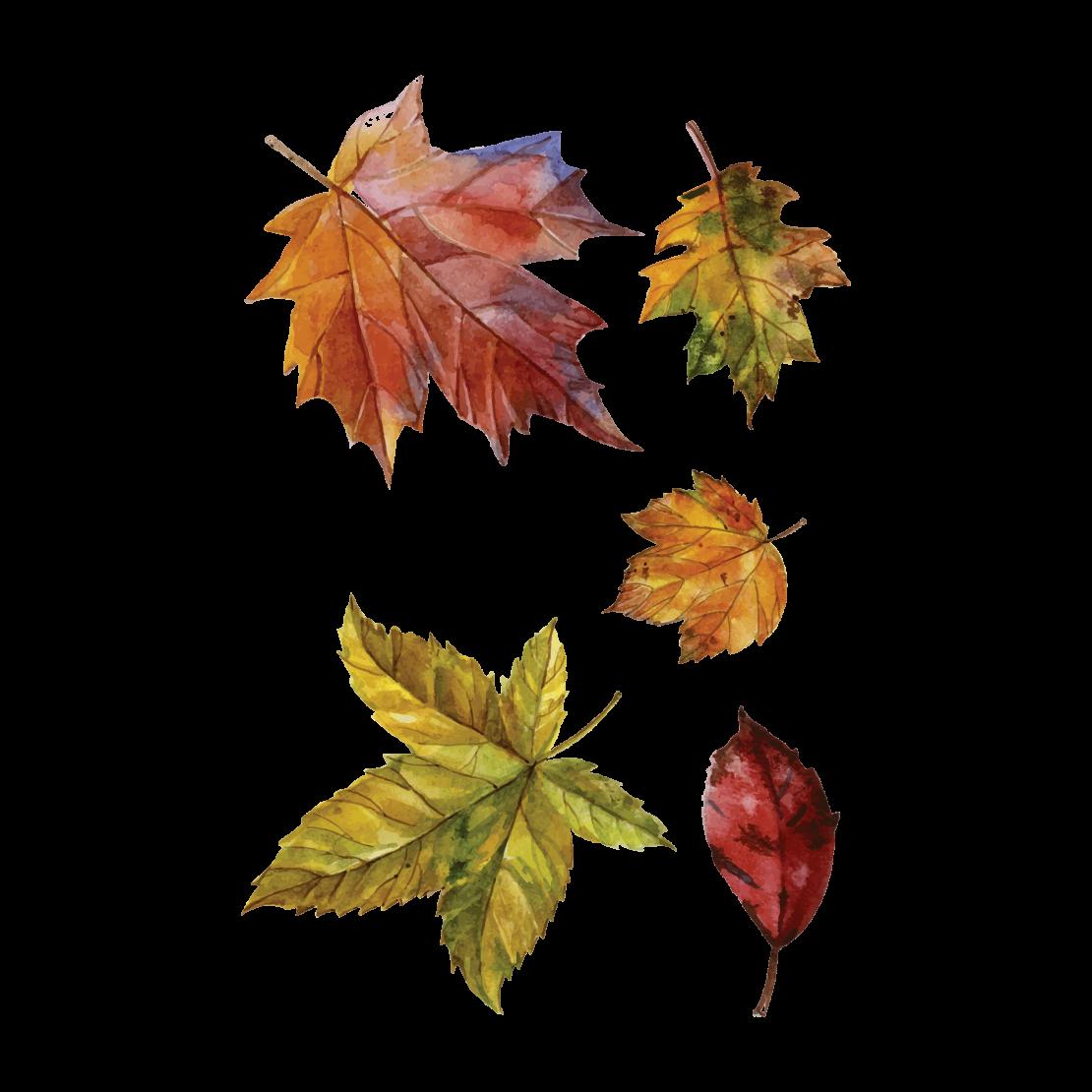Временная татуировка Осенние листья