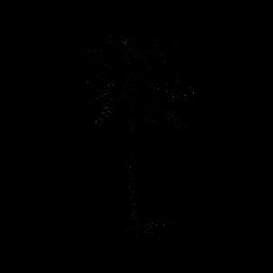 Временное тату пальма