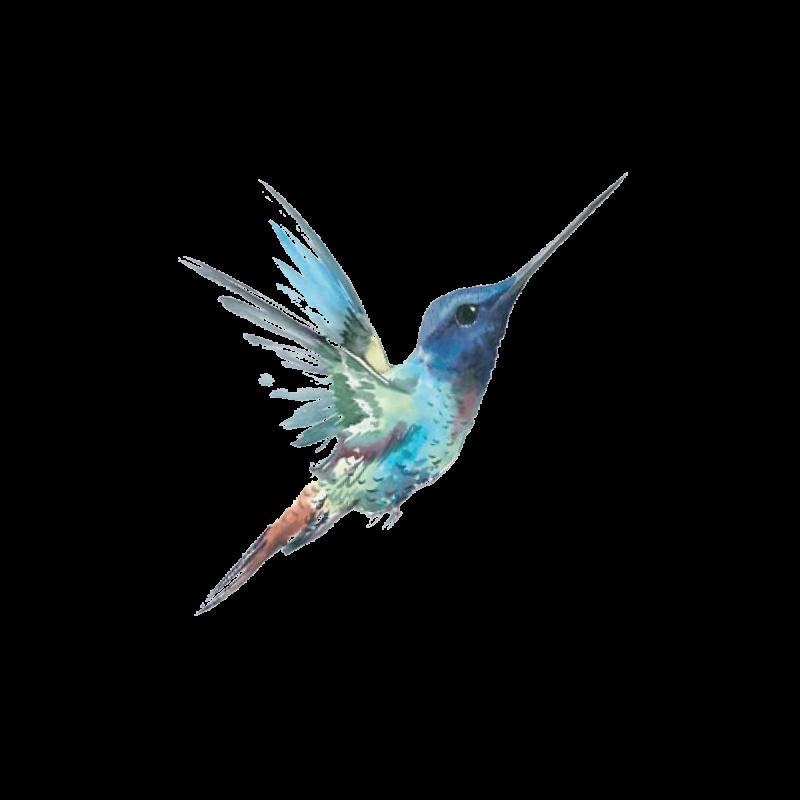 Временное тату колибри в полете